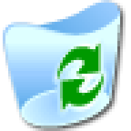 windows xp - bin icon